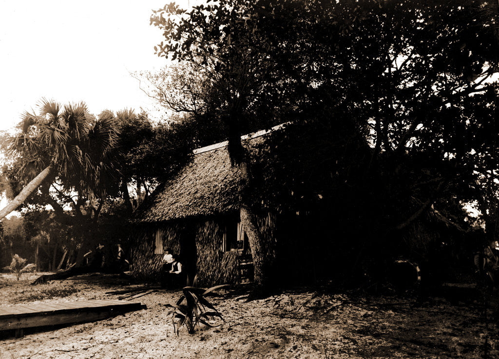 Detail of Dawson's, Gem Island, Indian River, Jackson, Bays, Thatched roofs, Dwellings, United States, Florida, Indian River, 1880 by William Henry