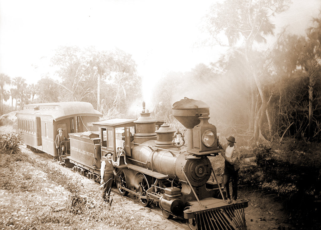 Detail of Jupiter & Lake Worth R.R, Jackson, Jupiter & Lake Worth Railroad, Railroad companies, Railroad locomotives, United States, Florida, Jupiter, 1880 by William Henry