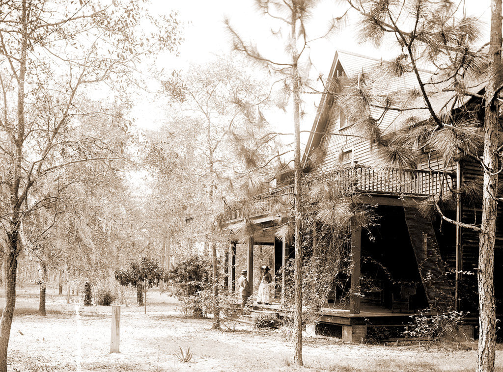 Detail of Florida home, Seville, Fla, A, Jackson, Dwellings, United States, Florida, Seville, 1880 by William Henry