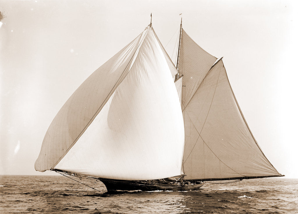 Constellation (Schooner), 1892 by Anonymous