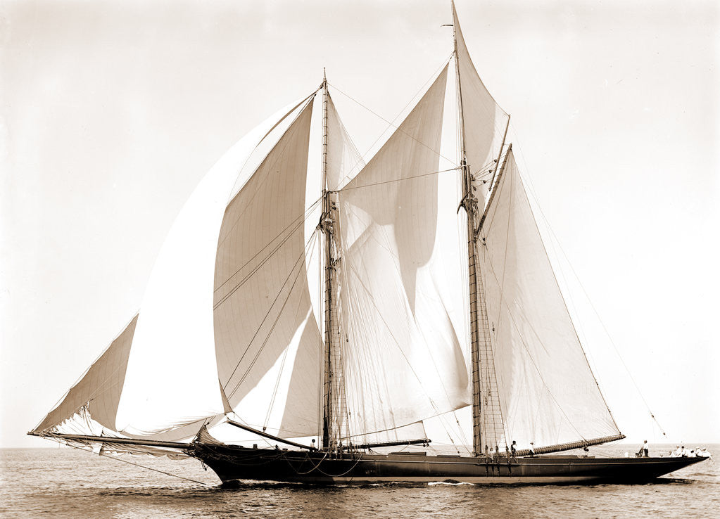 Detail of Constellation (Schooner), 1892 by Anonymous
