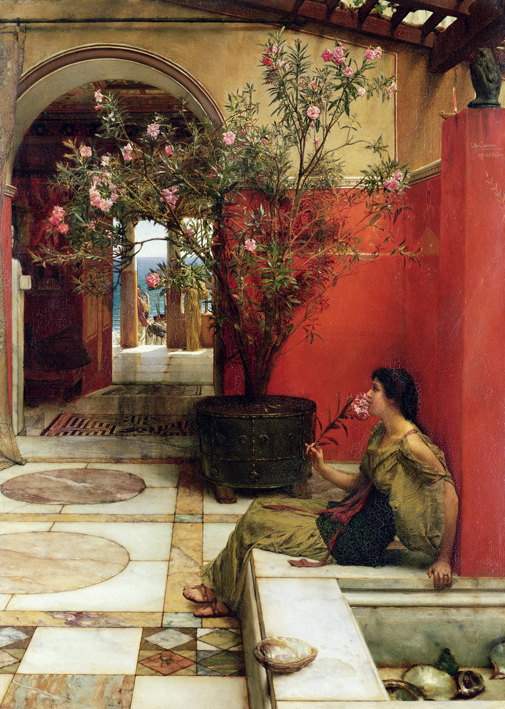Detail of An Oleander, 1882 by Lawrence Alma-Tadema