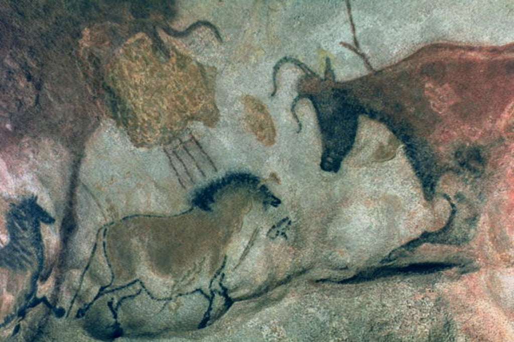 Detail of Rock painting showing a horse and a cow, c.17000 BC by Prehistoric Prehistoric