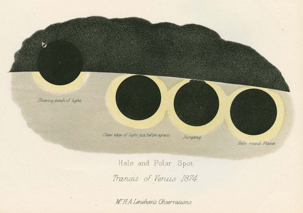 Detail of Halo and polar spot by Anonymous