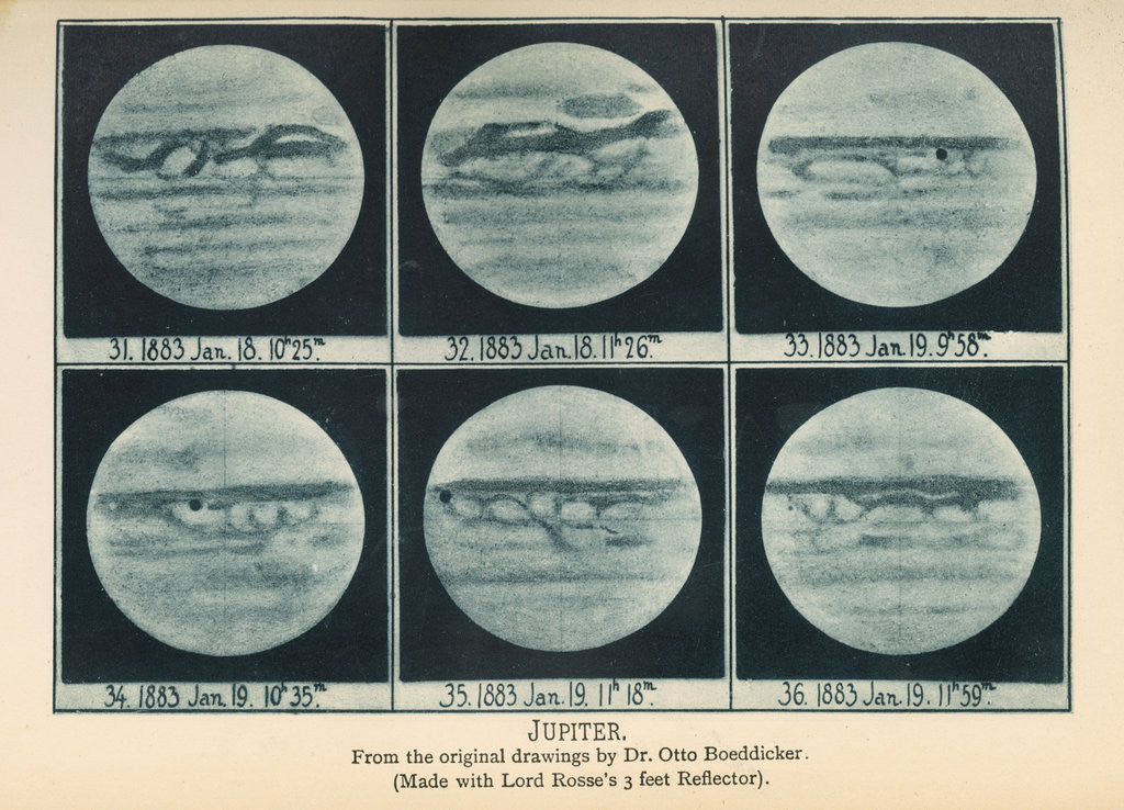 Detail of Phases of Jupiter by Anonymous