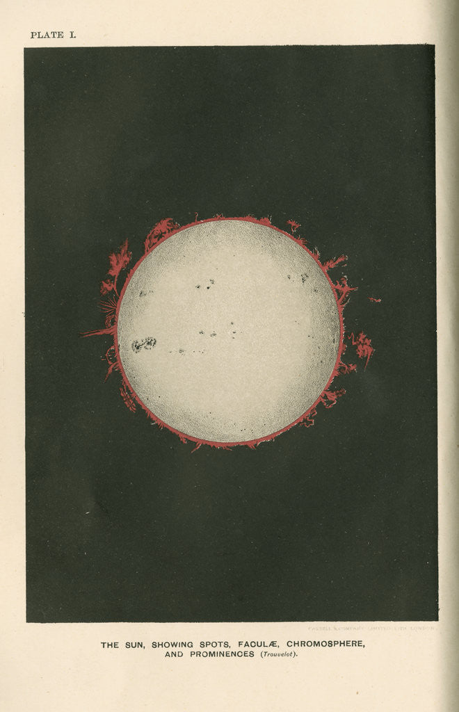 Detail of The sun showing spots, faculae, chromosphere, and prominences by Cassell & Co