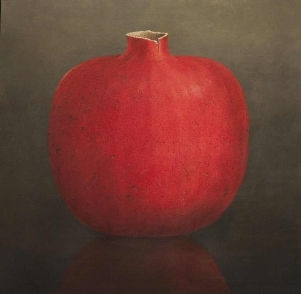 Detail of Pomegranate by Lincoln Seligman