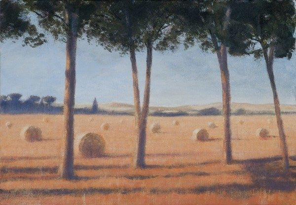Detail of Hay Bales and Pines, Pienza by Lincoln Seligman