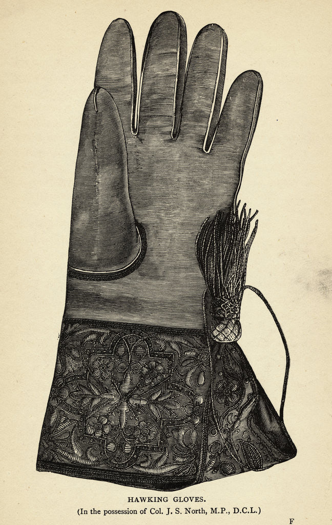 Detail of Illustration of Hawking Glove by Corbis