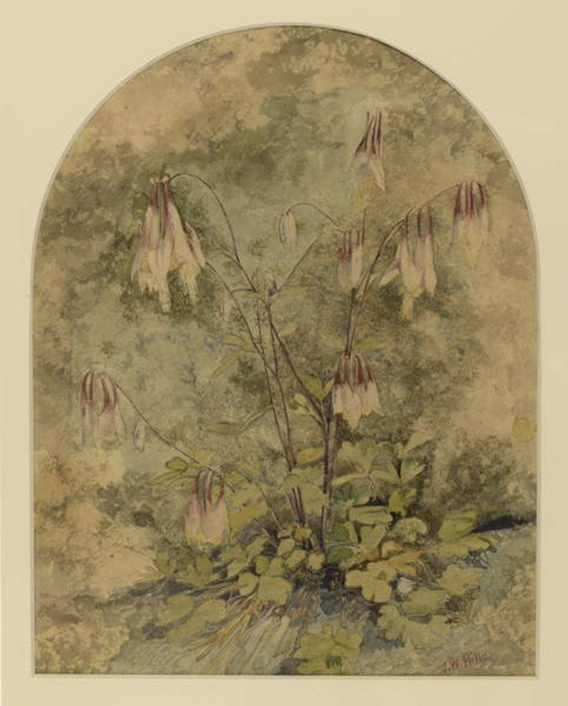 Detail of Wildflowers by John William Hill