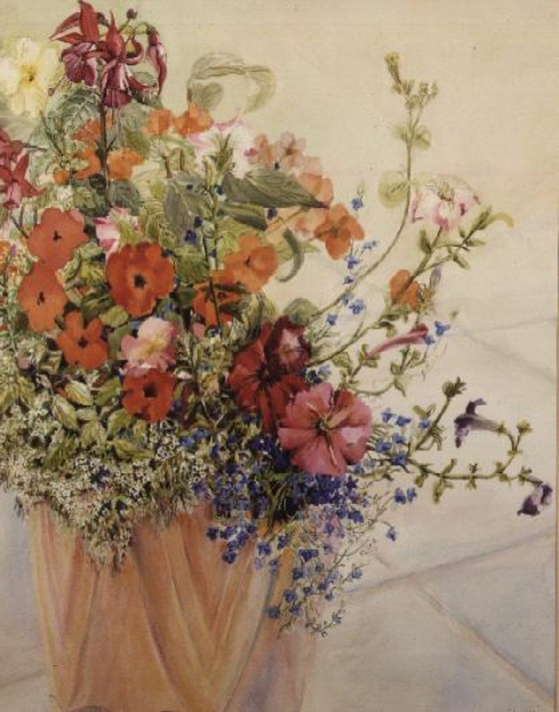 Detail of Petunias, Lobelias, Busy Lizzies and Fuschia in a Terracotta Pot by Joan Thewsey