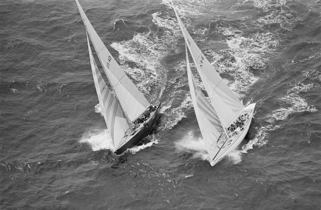 Detail of America's Cup Competitors by Corbis