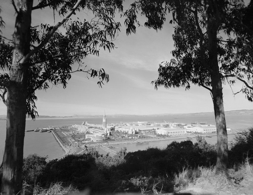 Detail of Distant View of San Francisco Through Tree Line by Corbis
