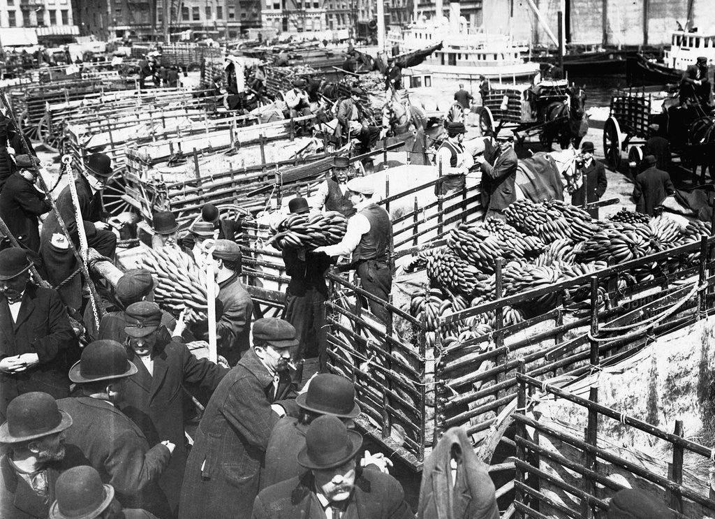 Detail of Bananas Arriving at Dock by Corbis
