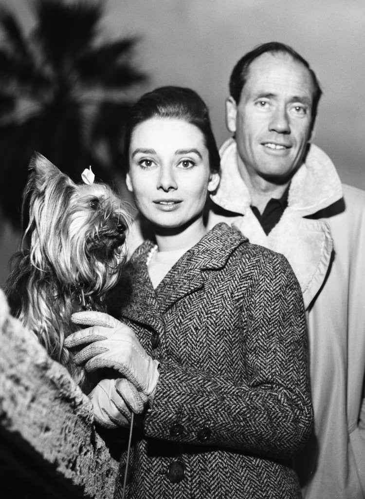 Detail of Audrey Hepburn with Mel Ferrer and their pet dog in Rome by Zwirn