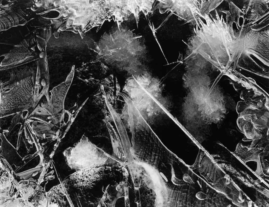 Detail of Ice, Mono Lake, 1958 by Corbis