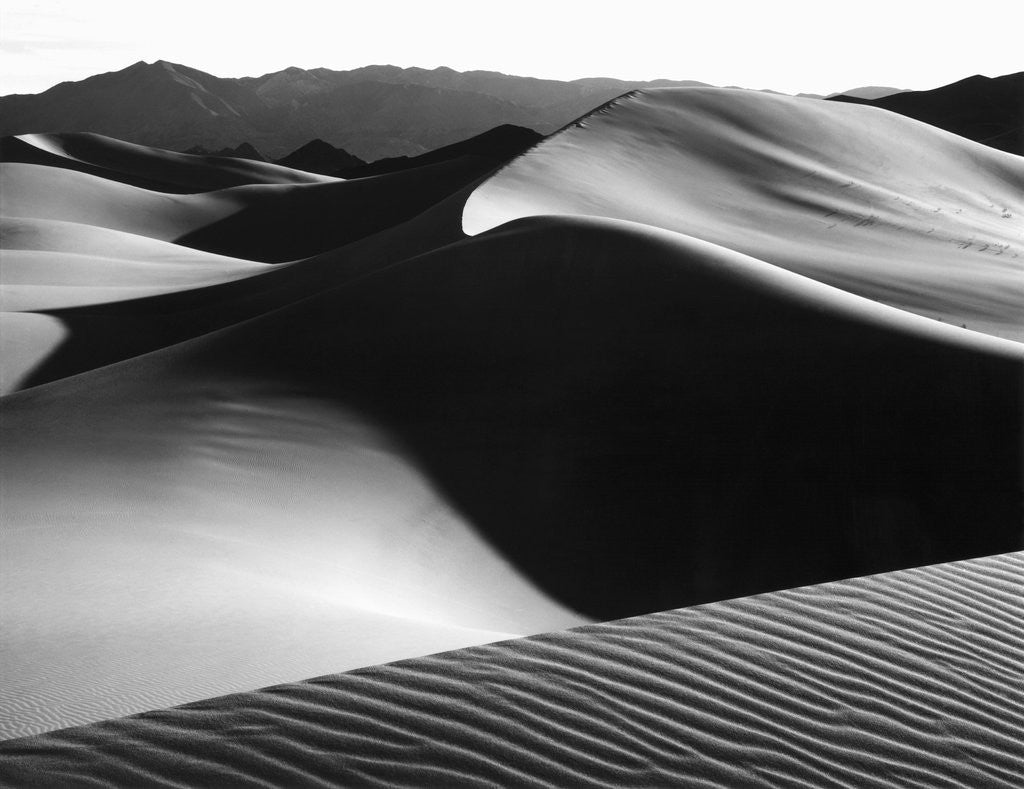 Detail of Dunes, Death Valley, 1967 by Corbis