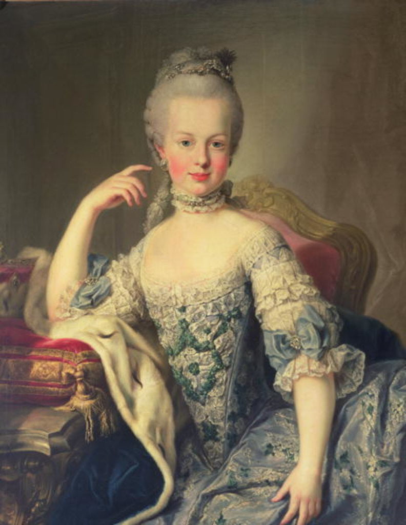 Detail of Archduchess Marie Antoinette Habsburg-Lotharingen by Martin II Mytens or Meytens