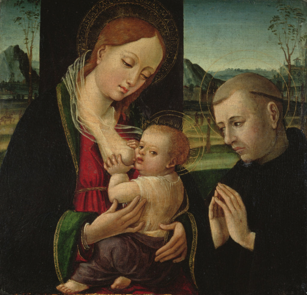 Detail of Madonna feeding the Christ Child, c.1500-30 by Ambrogio Borgognone
