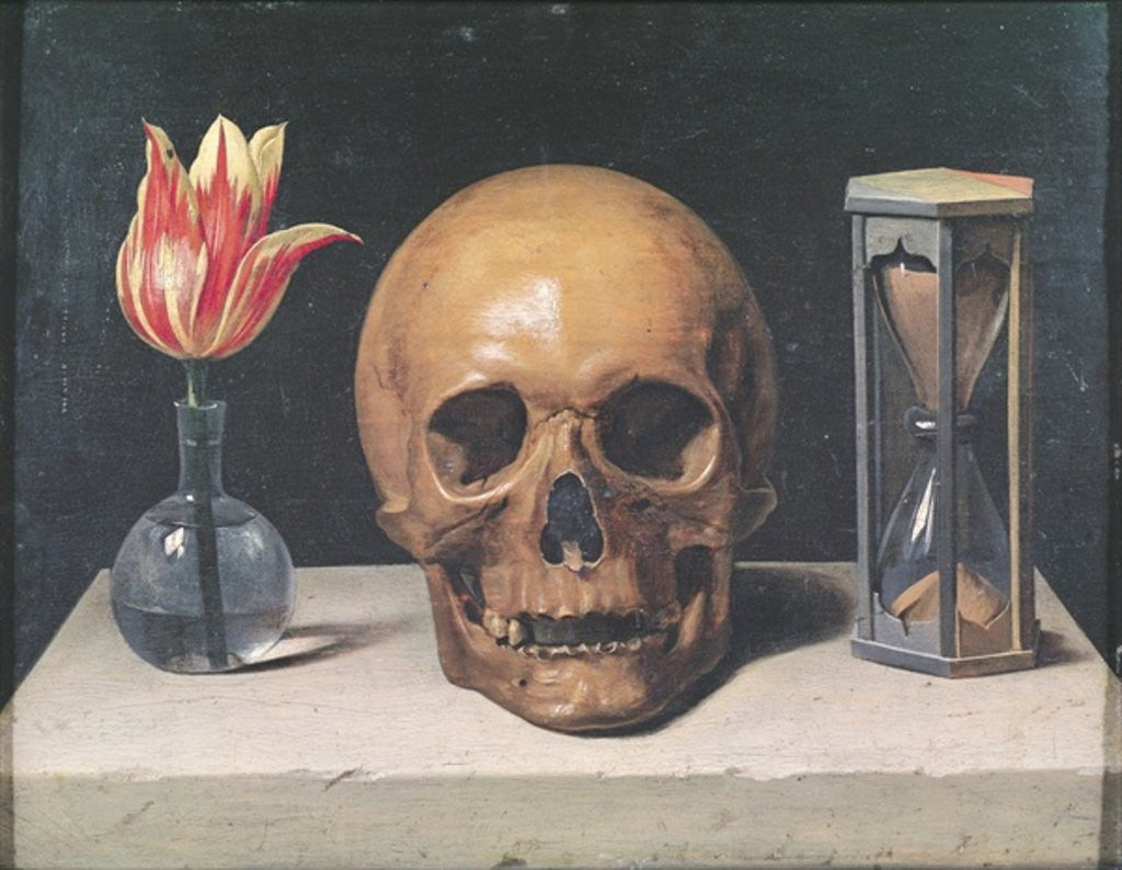 Vanitas Still Life With A Tulip Skull And Hour Glass
