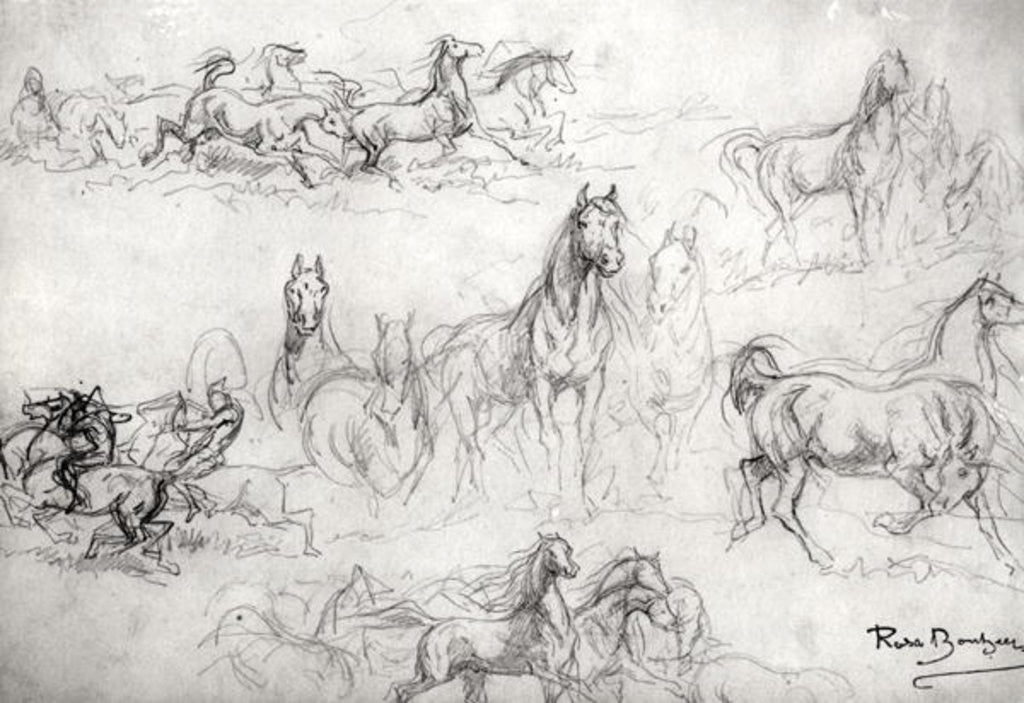 Detail of Study of Horses by Rosa Bonheur