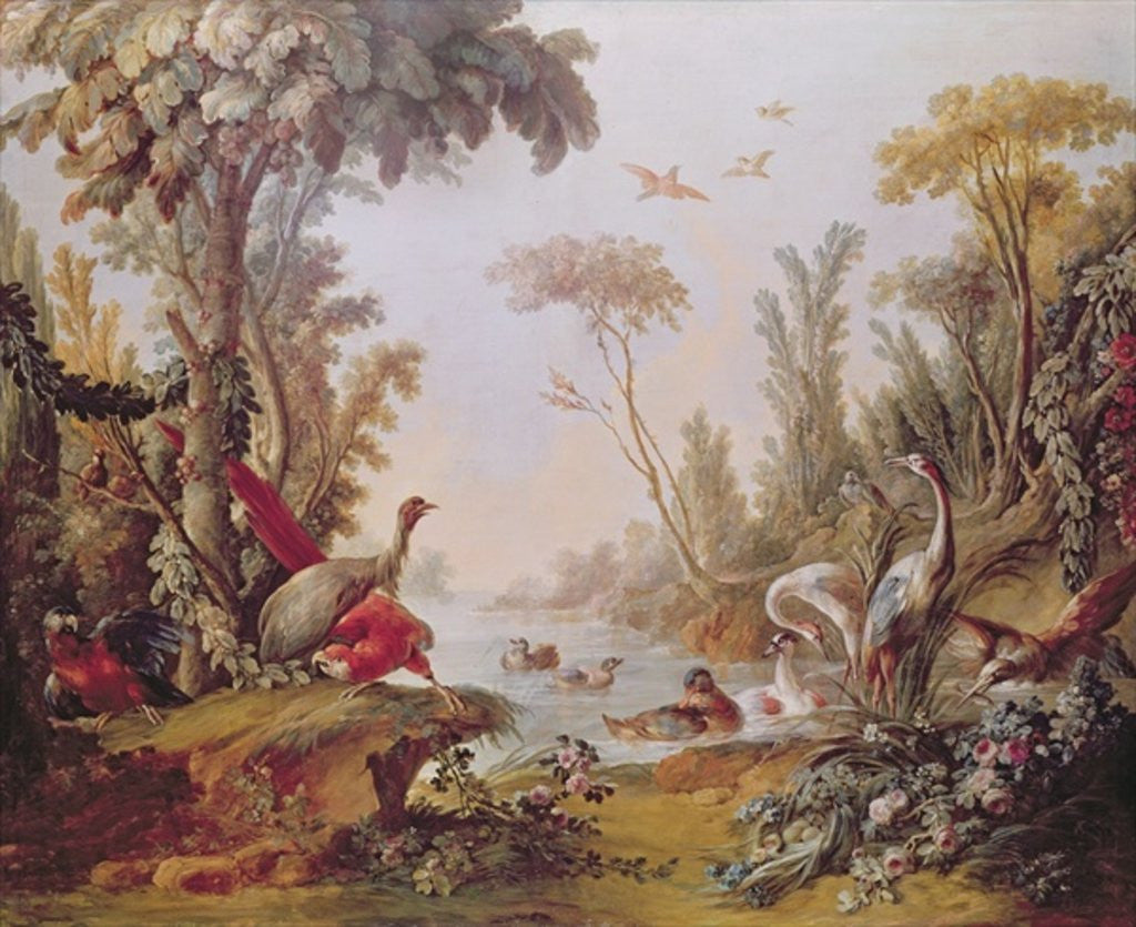 Detail of Lake with geese, storks, parrots and herons by Francois Boucher