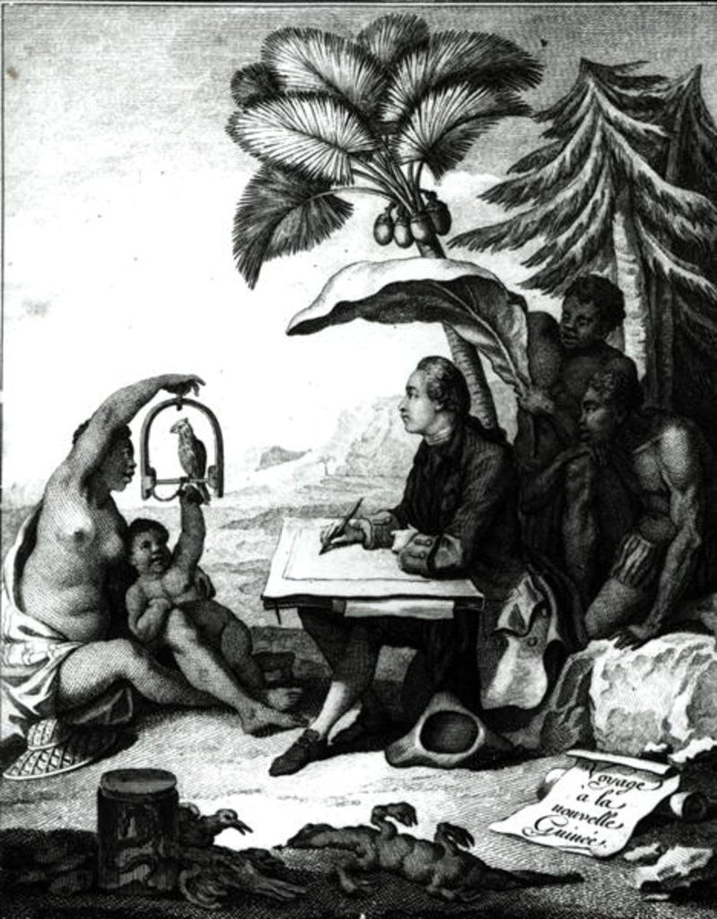 Detail of Pierre Sonnerat Drawing a Bird by Pierre Sonnerat