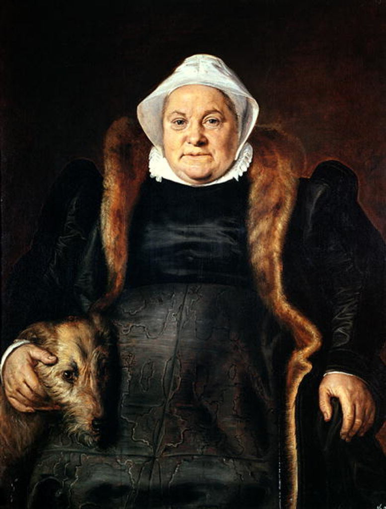 Detail of Portrait of an Elderly Woman or, The Falconer's Wife by Frans Floris