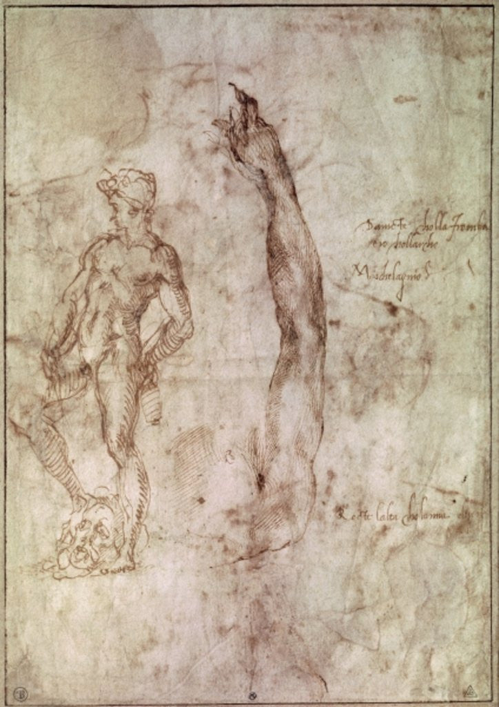 Detail of Study for David by Michelangelo Buonarroti