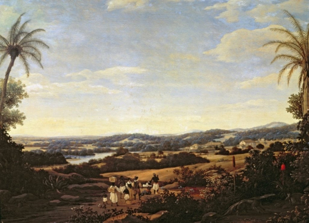 Detail of Brazilian Landscape with a Plantation by Frans Jansz Post