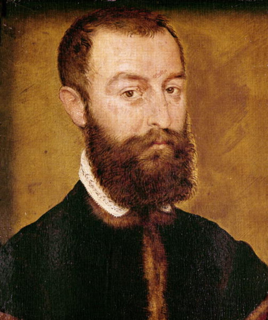 Portrait of a Man with a Beard or, Portrait of a Man with Brown Hair