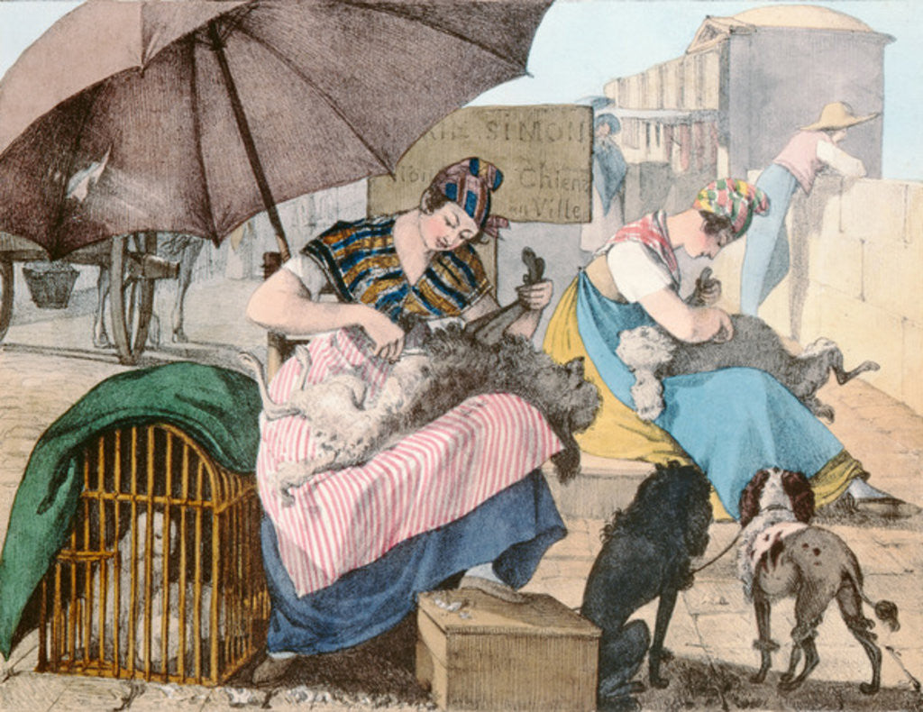 Detail of The Dog Groomers by John James Chalon
