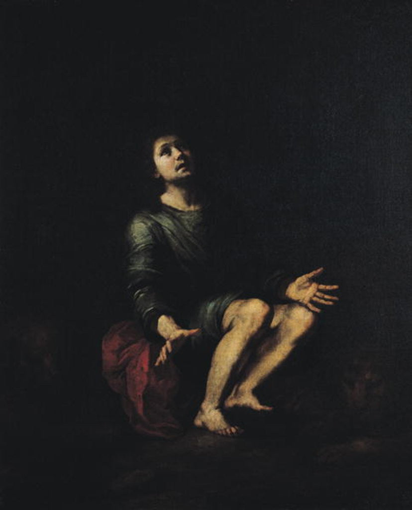 Detail of Daniel in the Lions' Den by Bartolome Esteban Murillo