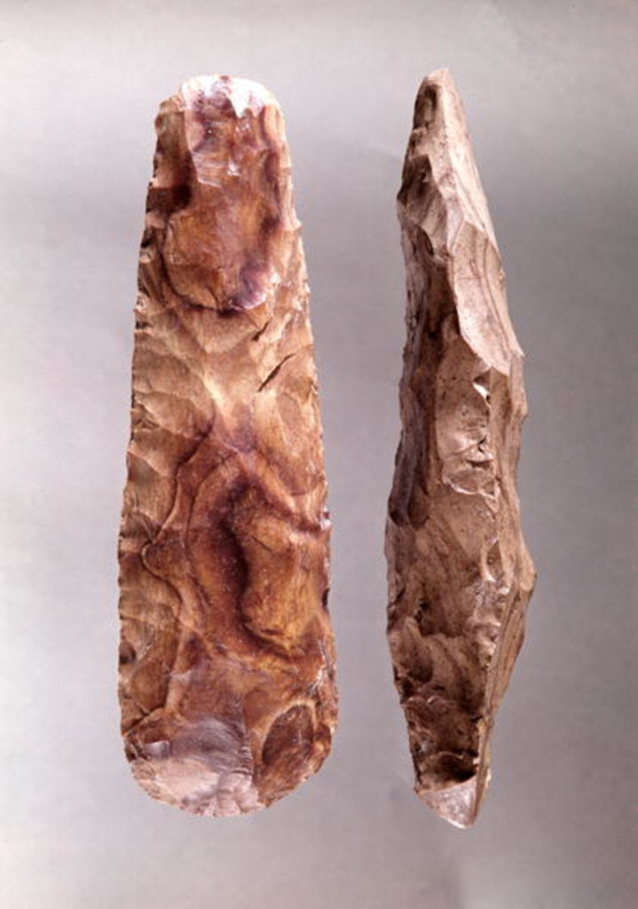 Detail of Tools from Campigny, 6000-2000 BC by Prehistoric