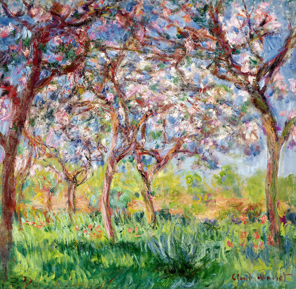 Detail of Printemps a Giverny by Claude Monet