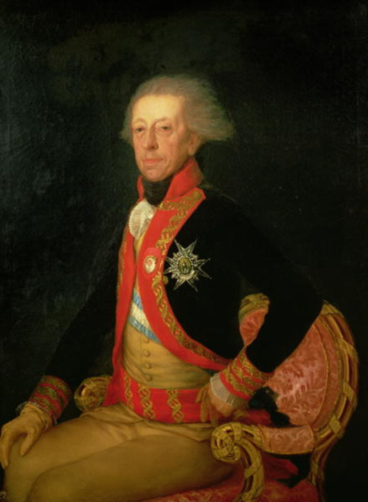 Detail of General Antonio Ricardos by Francisco Jose de Goya y Lucientes