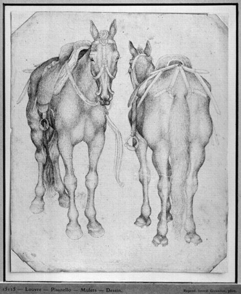 Detail of Two horses by Antonio Pisanello