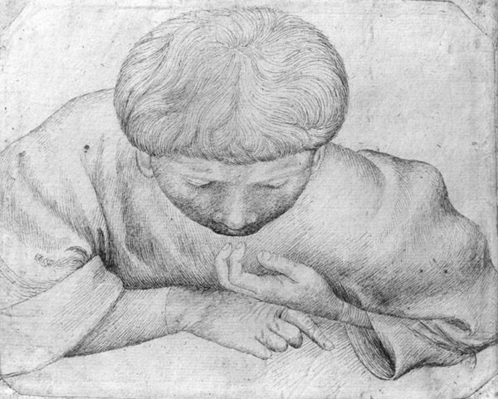 Detail of Boy reading by Antonio Pisanello