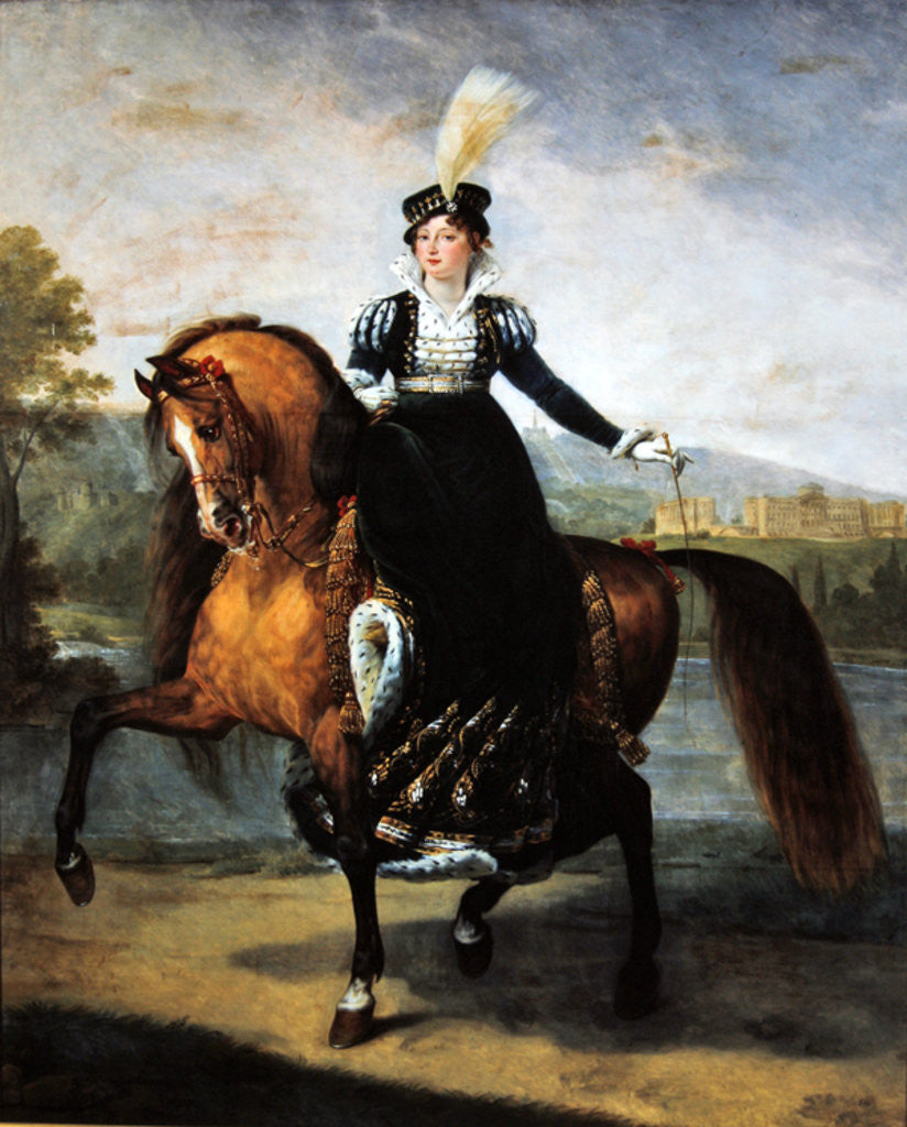 Detail of Equestrian portrait of Catherine de Wurtemberg by Antoine Jean Gros