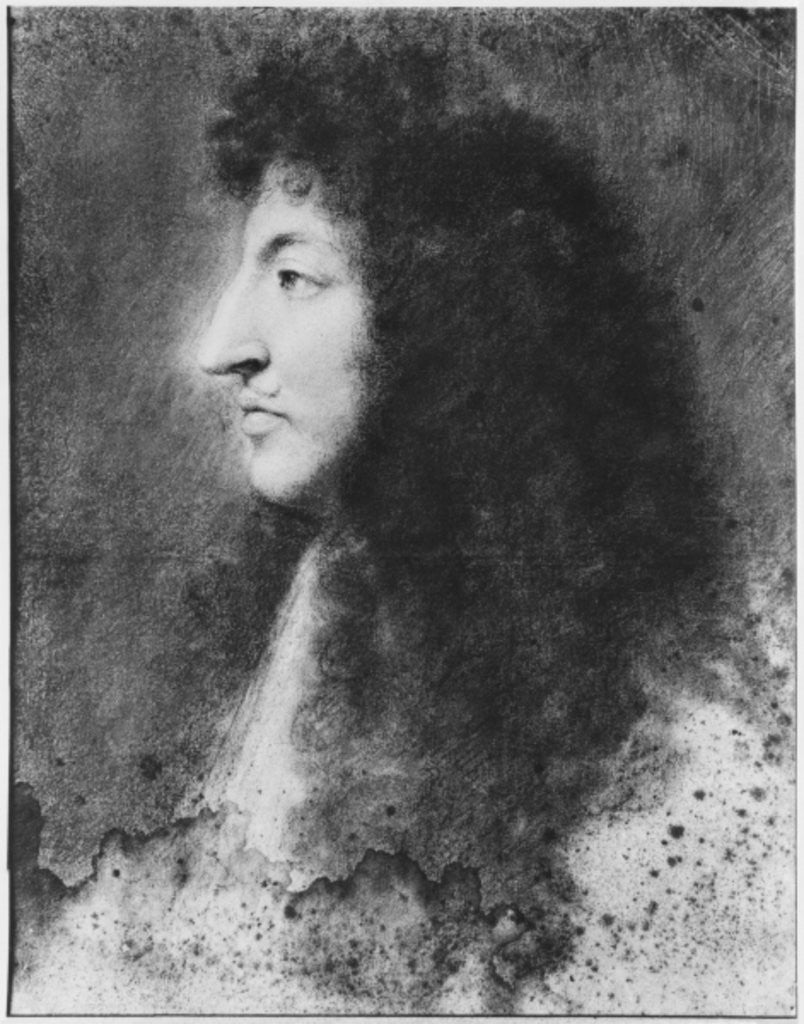 Detail of Portrait of Louis XIV, young, in profile to the left by Charles Le Brun