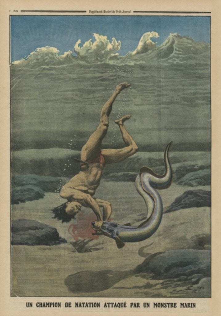 Detail of A swimming champion attacked by a sea monster by French School