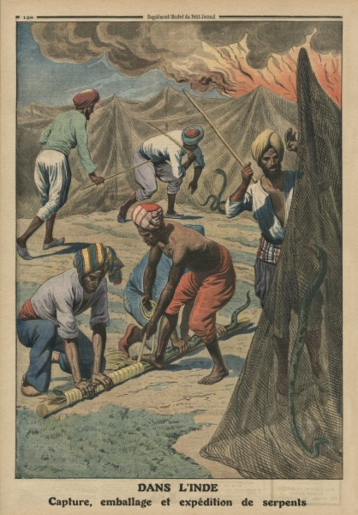 Detail of Catching, packing and sending snakes, India by French School