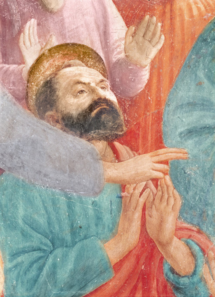 Detail of The head of St. Paul by T. & Lippi
