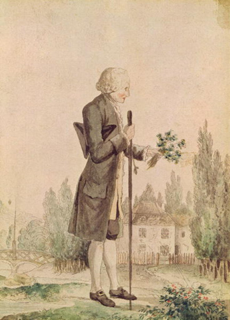 Detail of Jean-Jacques Rousseau Gathering Herbs at Ermenonville by French School