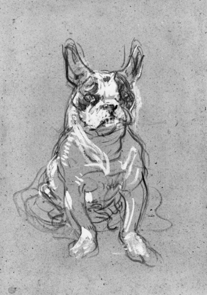 Detail of 'Bouboule', the bulldog of Madame Palmyre at La Souris by Henri de Toulouse-Lautrec