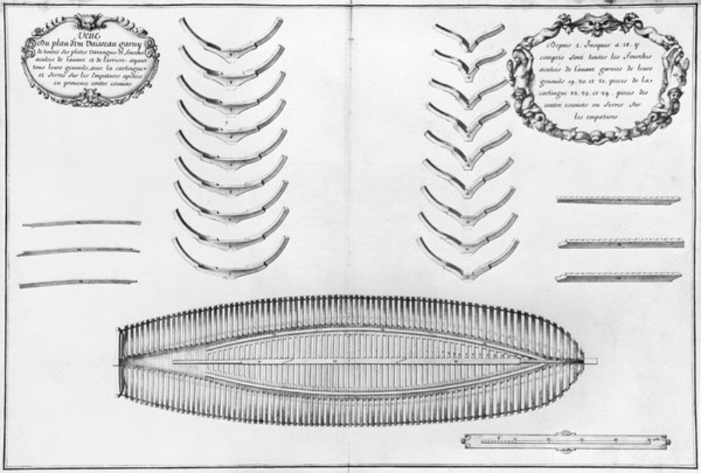 Detail of Plan of a vessel with all its floor plates and forks by plate 8