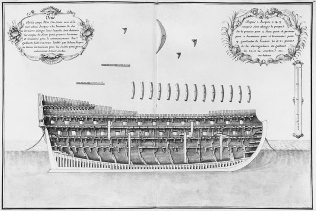 Detail of Cross-section of a launched vessel by French School