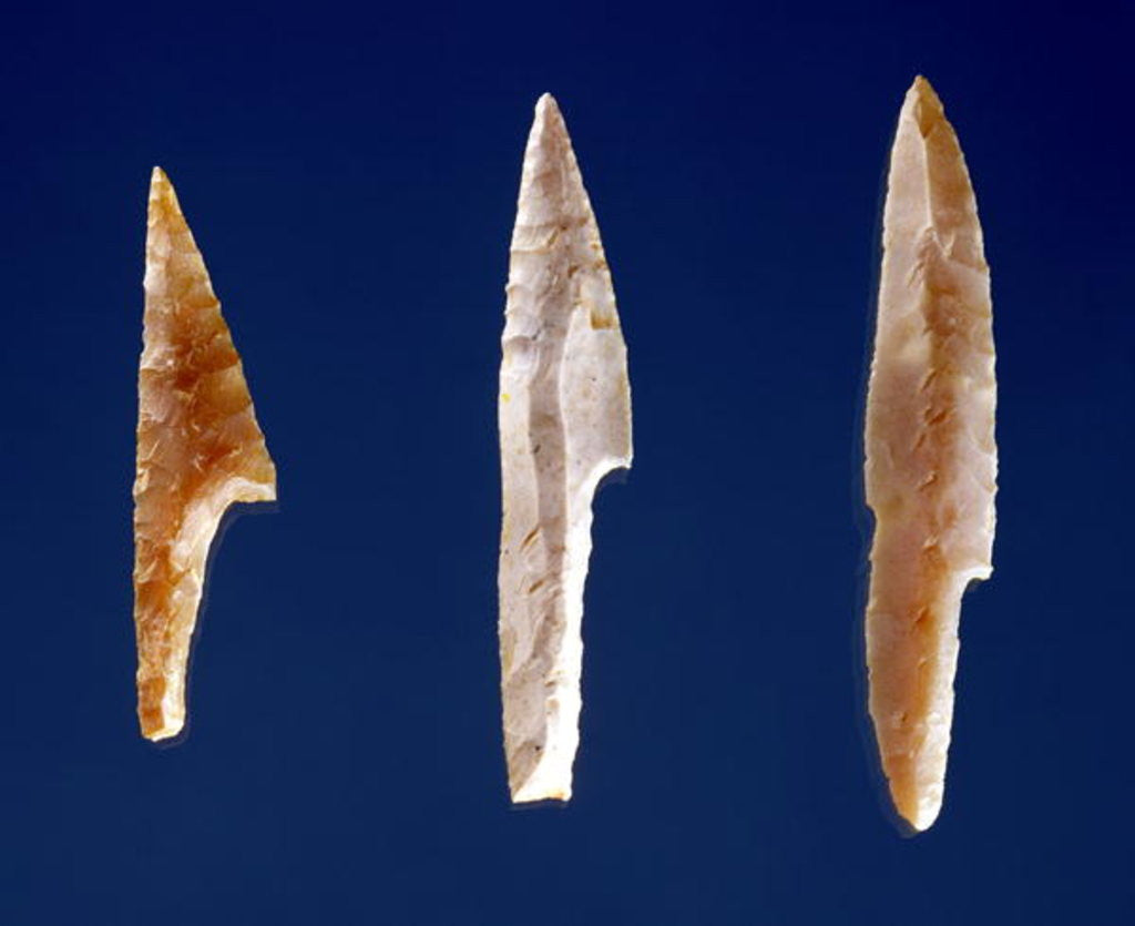 Detail of Three serrated points by Prehistoric