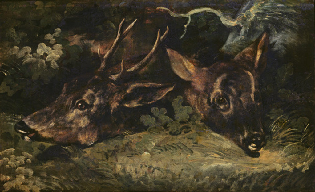 Detail of Heads of Roe Deer by Theodore Gericault