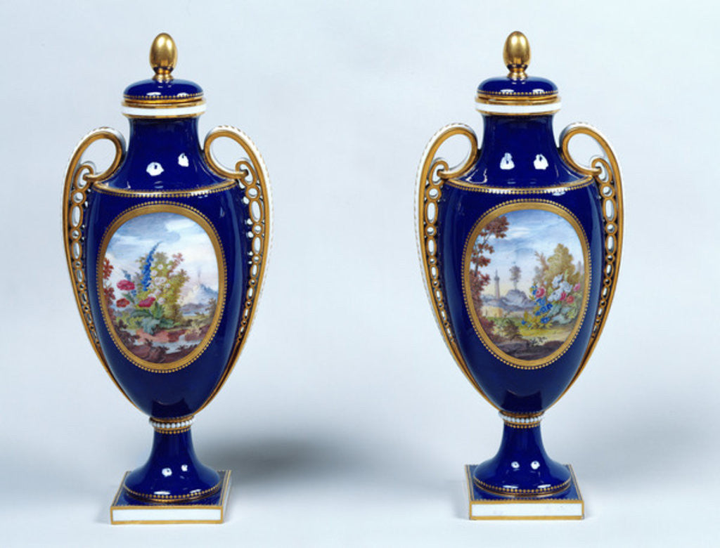 Detail of A Pair of Sèvres Vases with decorative floral medallions by French School